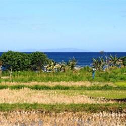 Sullo sfondo: Lombok