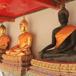 Fila di Buddha nel Wat Po