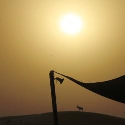 Il sole sta tramontando