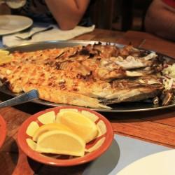 Pesce Hammour