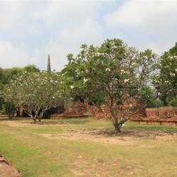 Le rovine del vecchio palazzo reale