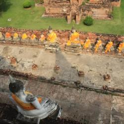 Le statue di Buddha dall'alto
