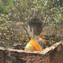 Un enorme Buddha