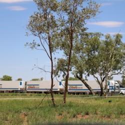 Un road train