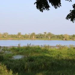 Il lago a Jabiru